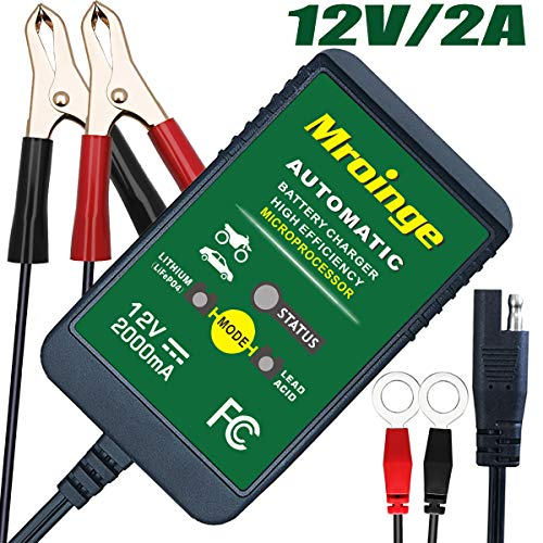 Mroinge Trickle Battery Charger